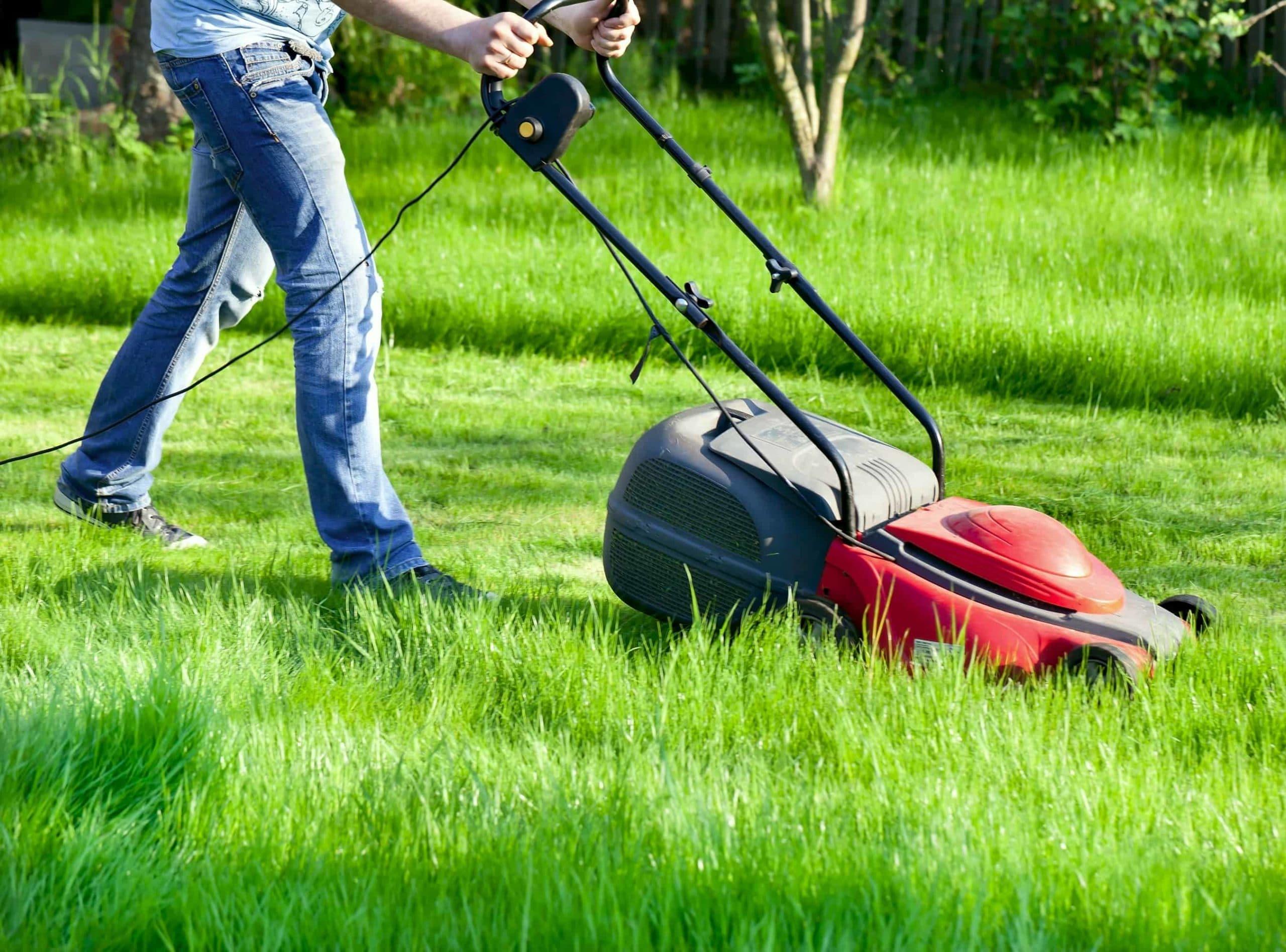 Lawn Mower Horsley Park